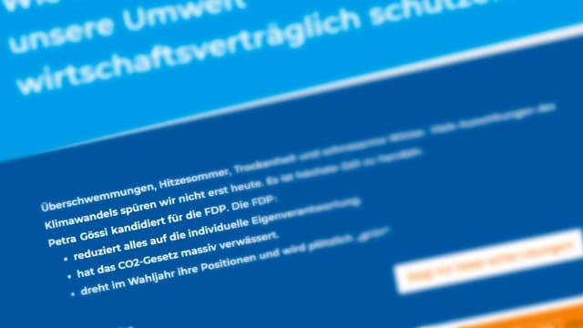 Eine Internetseite.