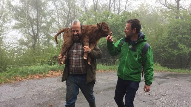 Giovanni Berardi züchtet schottische Hochlandrinder und trägt ein Kalb auf den Schultern.