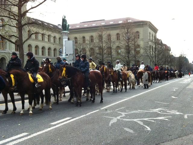 Pferdekolonne auf der Strasse
