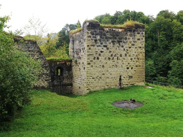 Eine überwachsene Burgruine steht auf einer Grasfläche.