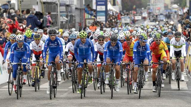 Radfahrer beim WM-Strassenrennen.