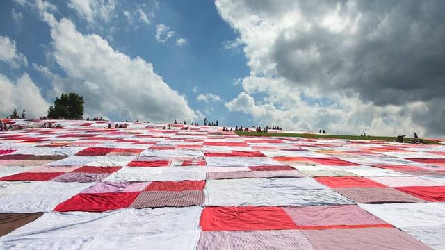 Viele Decken auf einer Wiese.