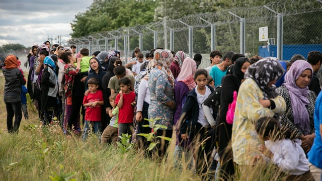 Menschen stehen in hohem Gras an einem mit Stacheldraht bedeckten Zaun.