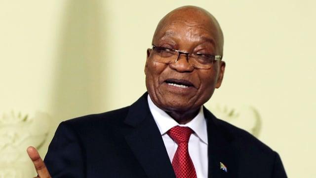 Zuma: Nahaufnahme.