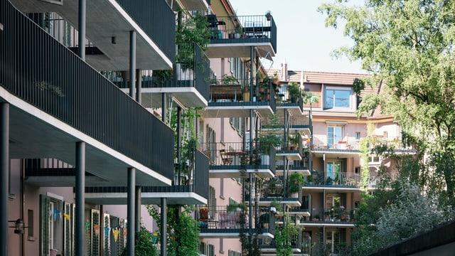 Wohnsiedlung mit Balkonen vom Hinterhof aus gesehen.
