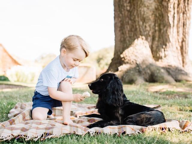 Prinz George posiert zusammen mit seinem Hund auf einer Picknickdecke fürs Foto.