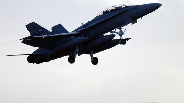 F/A 18-Flugzeug in der Luft.