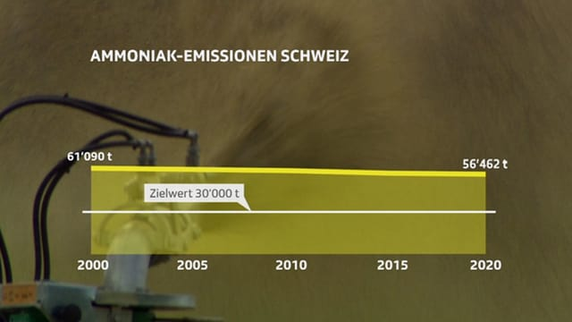 Grafik Ammoniak-Emissionen