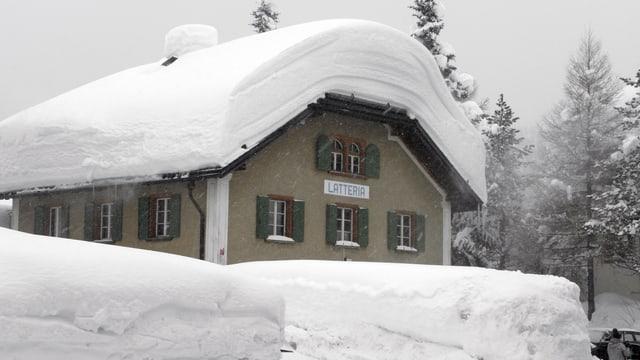Schneebedecktes Haus