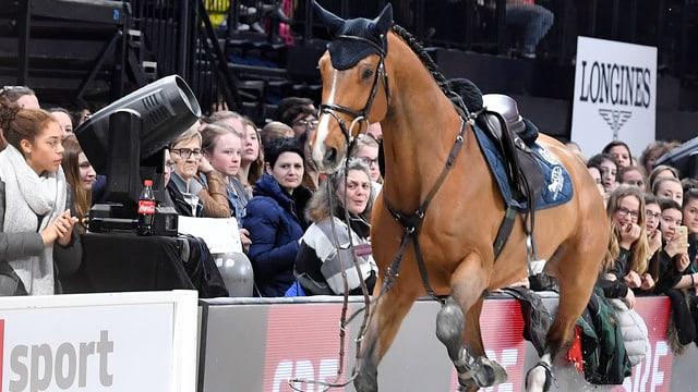 Ein braunes Pferd galoppiert ohne Reiter an sitzenden Zuschauerinnen und Zuschauern vorbei.