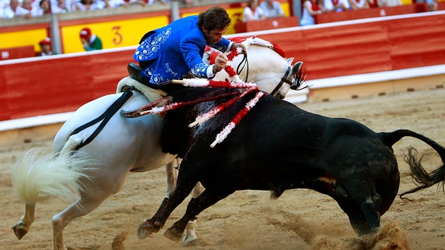 Stierkämpfer steckt einem Stier einen Speer in den Rücken