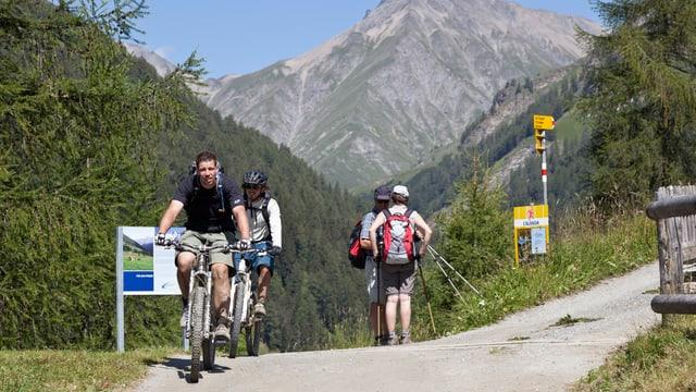 Wanderer und Biker auf dem gleichen Weg.