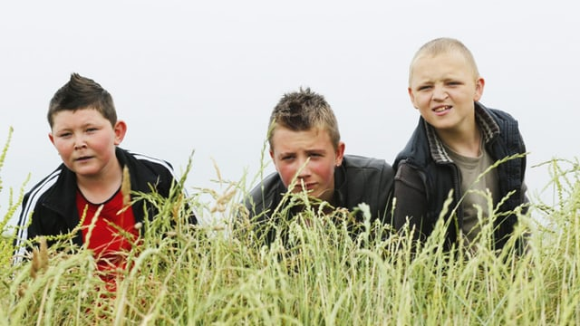 Drei Jungen hinter Gräsern.