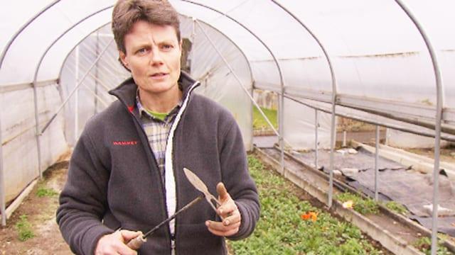 Gartenbau-Expertin