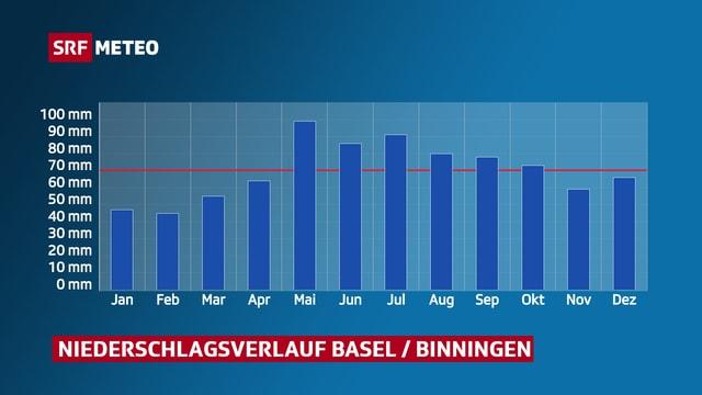 Niederschlagsverlauf Basel / Binningen