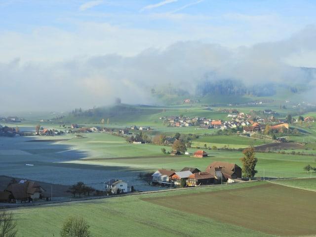 Reif liegt auf Wiesen und Äckern, im Hintergrund ist eine Nebelwand zu erkennen.