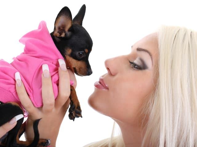 Eine Frau hält einen Hund im Arm, der mit einem pinkfarbenen Tuch eingewickelt ist.