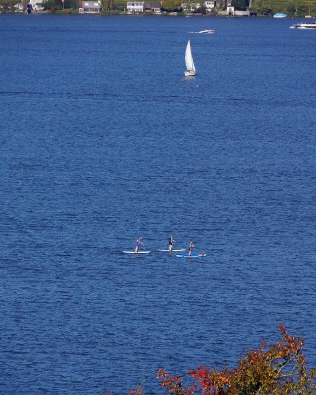 """Drei junge Damen mit ihren """"Stand up paddlings"""" am Sonntagnachmittag auf dem Zürichsee."""
