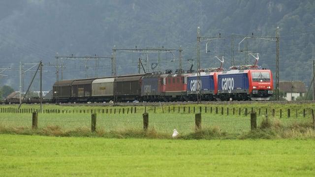 Ein SBB-Güterzug unterwegs auf ländlicher Bahnstrecke.