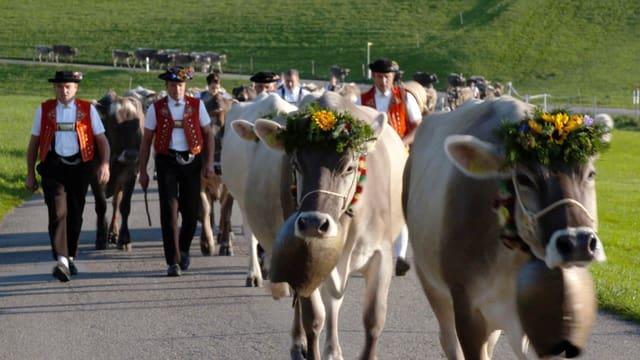Video «Grand Tour der Schweiz: Vom Tessin ins Appenzell (3/3)» abspielen