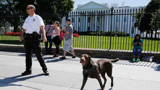 Sicherheitsmann mit Hund vor dem Weissen Haus, daneben stehen mehrere Touristen.
