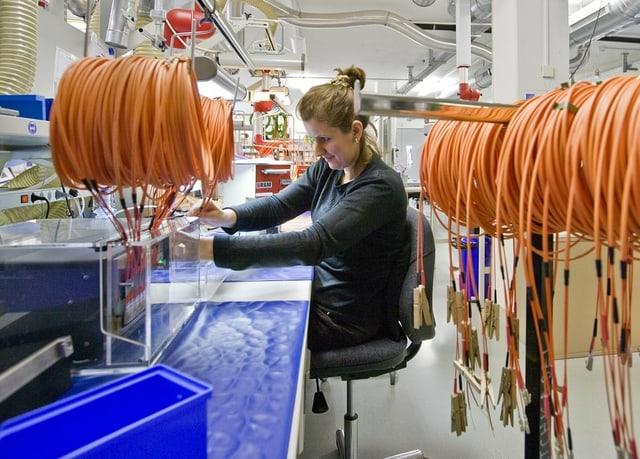 Keine Frau arbeitet in einer technischen Produktion.