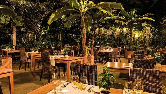 Das Restaurant im Tropenhaus Wolhusen.