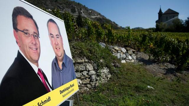 Wahlplakat in einem Rebberg.
