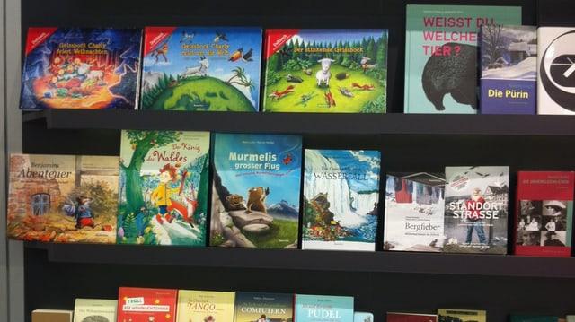 Bücher auf einem Bücherregal