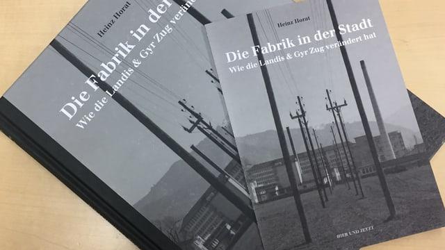 Das grau-schwarze Buch «Die Fabrik in der Stadt» auf einem Tisch.