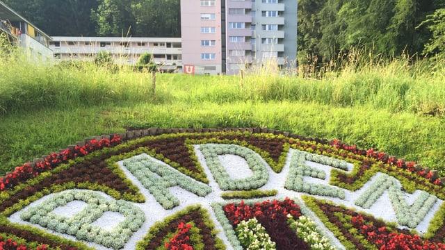 Blumenbeet mit Aufschrift Baden.