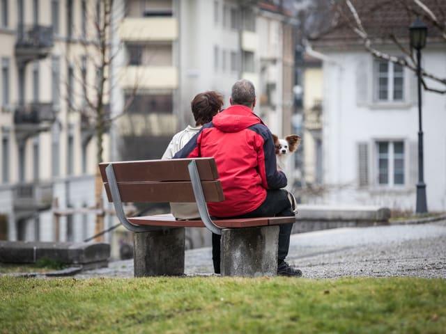 Ein Mann und eine Frau sitzen mit einem Hündchen auf einer Parkbank, die in einem kleinen Park steht.