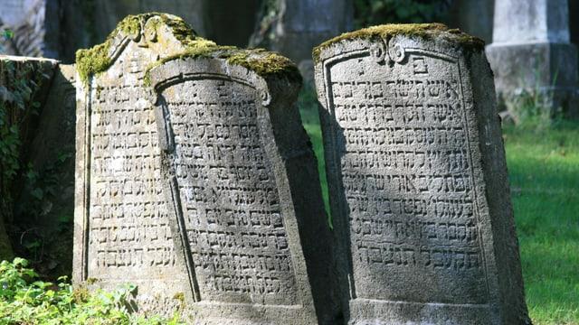 Grabsteine auf dem jüdischen Friedhof in Endingen.