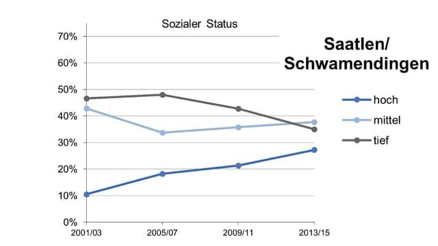 Graphik zum sozialen Status im Zürcher Quartier Schwamendingen.