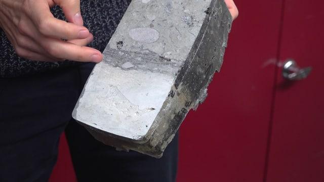 Sedimentprobe mit dunkler Schicht, die viel organisches Material enthält
