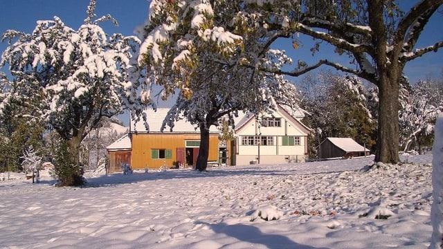 Appenzellerhaus in einer Winterlandschaft.