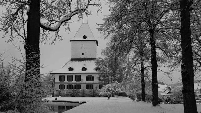 Schlosswil an einem nebligen Tag: dunkle Bäume, schneebedeckte Wege und ein grauer Himmel.