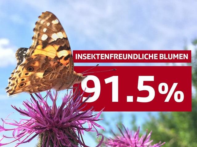 91.5% insektenfreundliche Blumen