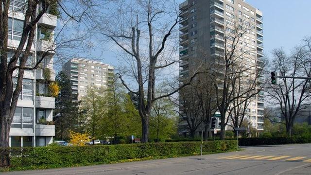 Bild Quartierstrasse mit Hochhäusern
