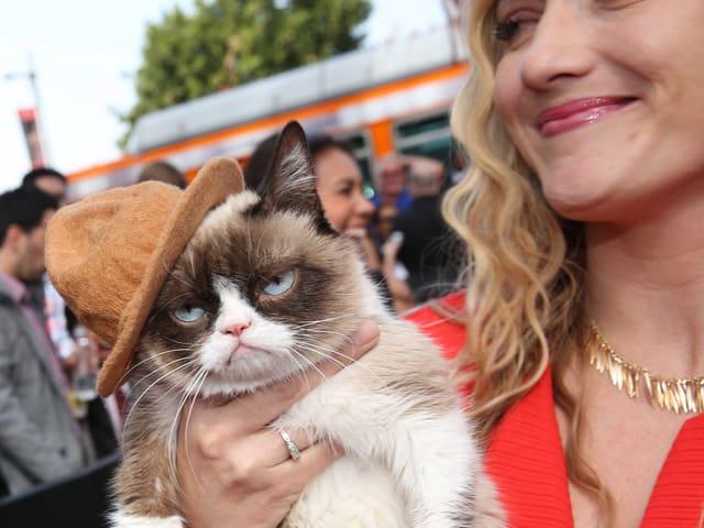 Grumpy CAt an den MTV Movie Awards - mit braunem Hut