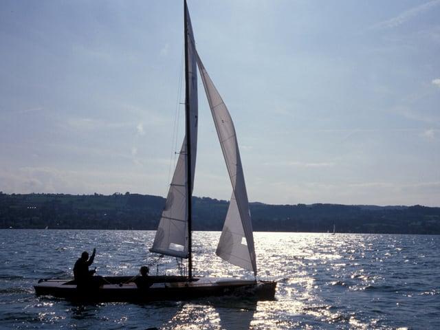 Ein kleie Segelboot gleitet über den Zürichsee