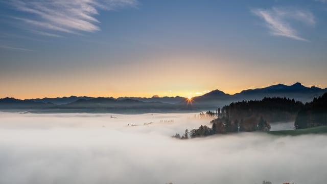 Blick von Herisau nach Osten über den Nebel zur aufgehenden Sonne.