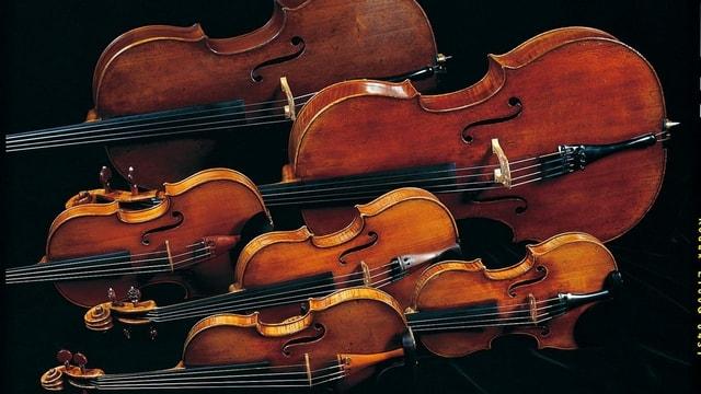Sechs Geigen.