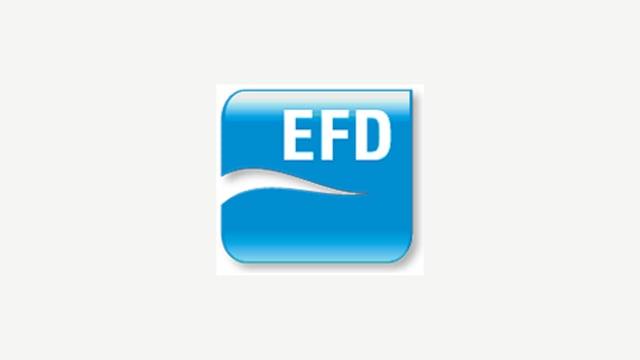 Logo der EFD-Fraktion
