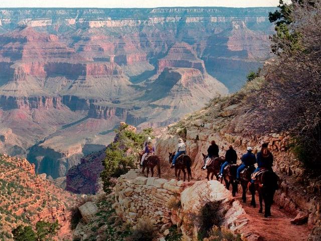 Touristen auf Pferden.