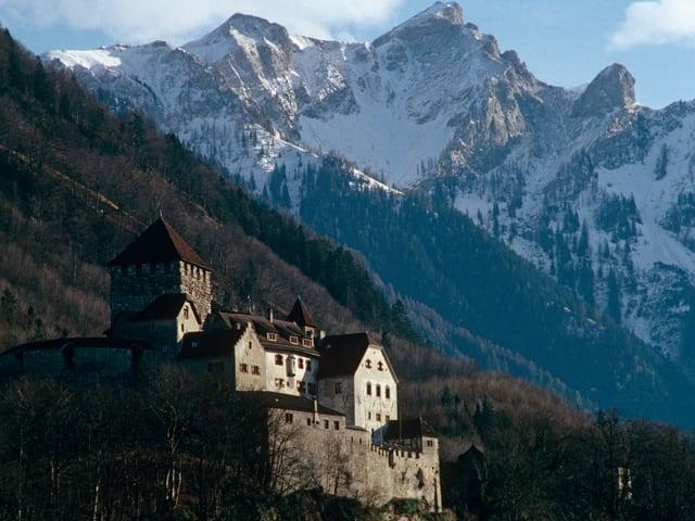 Fürstenschloss in Vaduz vor Bergpanorama