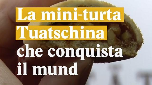 Laschar ir video «La mini-turta tuatschina che conquista il mund»