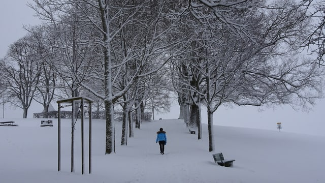 Frau wandert durch Schneelandschaft.