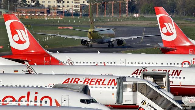 Mehrere Flugzeuge der Air Berlin stehen auf einem Flughafen nebeneinander.