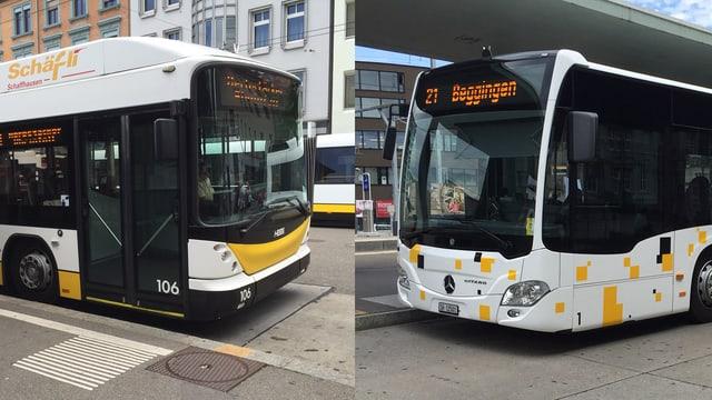 Ein Stadtbus und ein Regionalbus, seitlich von vorne augenommen, stehen sich gegenüber